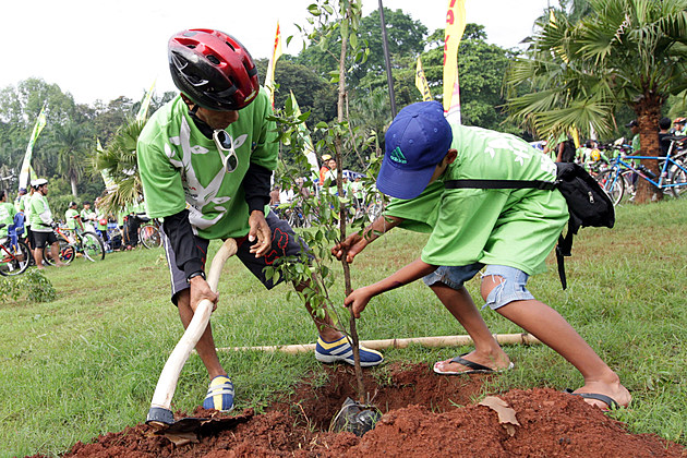 Bike To Work Group Members Conduct Tree Planting Program